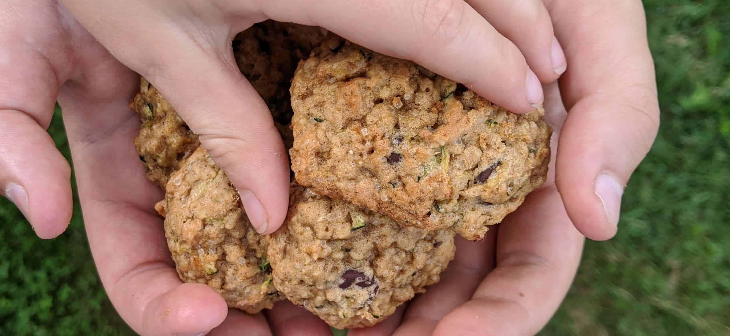 Oat & Spelt Zucchini Chocolate Chip Cookies