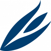 cropped-Site-icon-550x550.png